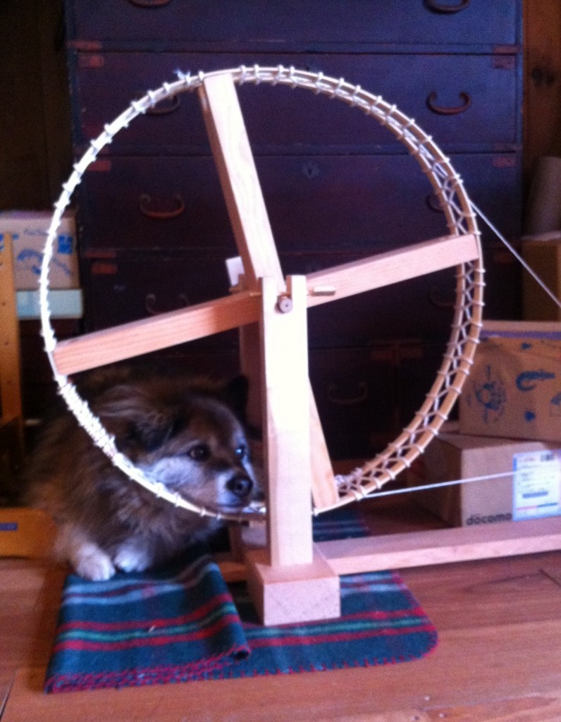 Maru with spinning wheel